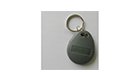 RFID Key Holder / Chip, 125kHz RDGT8