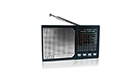 PORTABLE RADIO RS-3003UAR 3800158122886