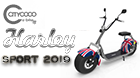 HARLEY ELECTRIC SCOOTER CITYCOCO SPORT 2019 ENGLAND 1000 W 12 AH BATTERY