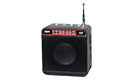 OEM WS-918 Mini MP3/Fm player